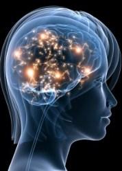 brain meditation women